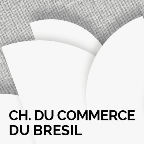 Chambre De Commerce Du Bresil En France Of Animation Teaser De L 39 Application Bnp Planetshares